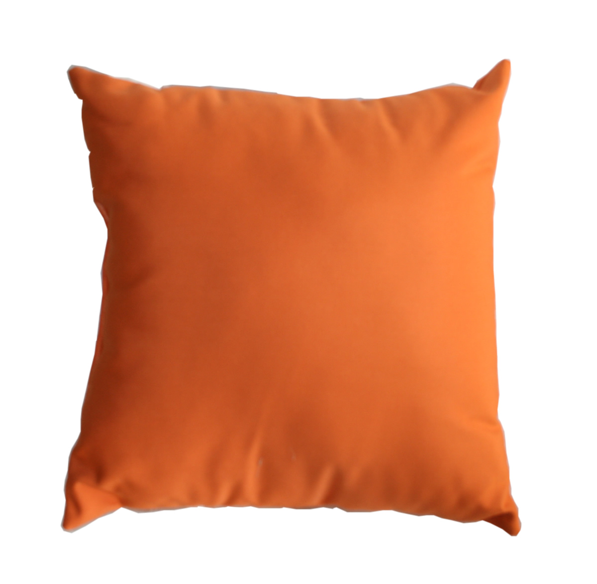 Sunbrella Indoor/Outdoor Throw Pillow