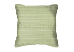 Throw Pillow in Sunbrella Dupione Aloe 8068